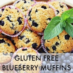 Natural Health Blog Real Food Recipes Natural Remedies - Easy Gluten Free Blueberry Muffins Recipe